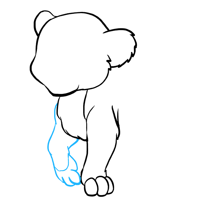 How to Draw Baby Lion: Step 4