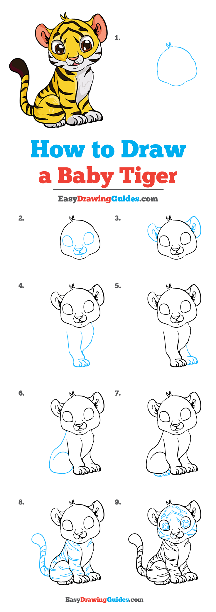 How to Draw Baby Tiger