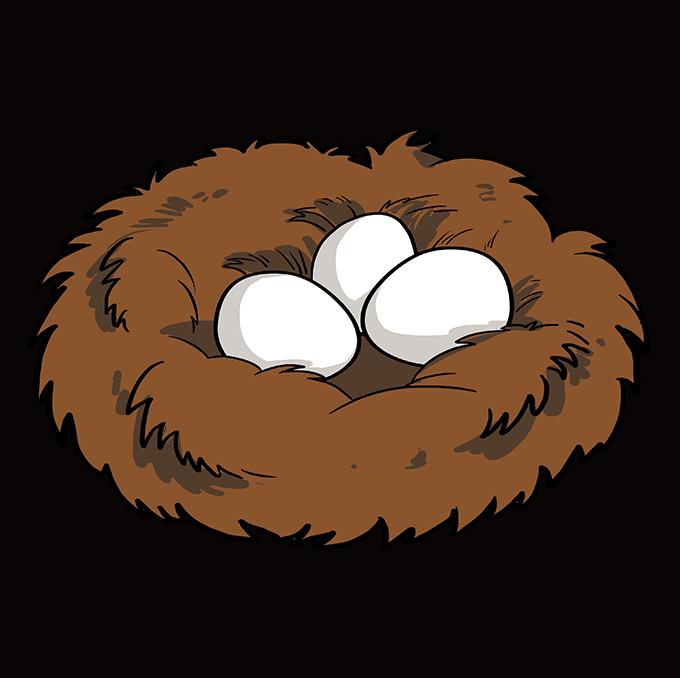 How to Draw Bird Nest: Step 10