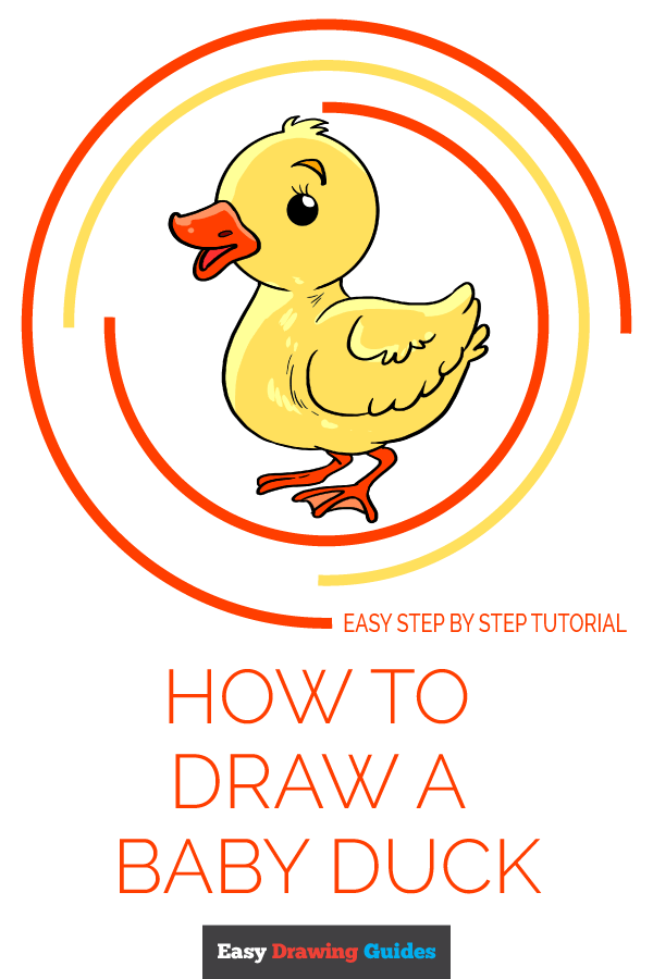 How to Draw Baby Duck | Share to Pinterest