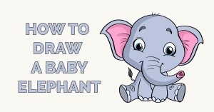 How to Draw a Baby Elephant Featured Image