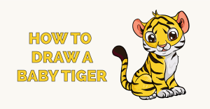 How to Draw a Baby Tiger Featured Image