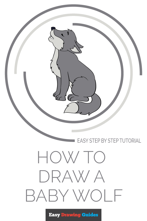 How to Draw Baby Wolf | Share to Pinterest