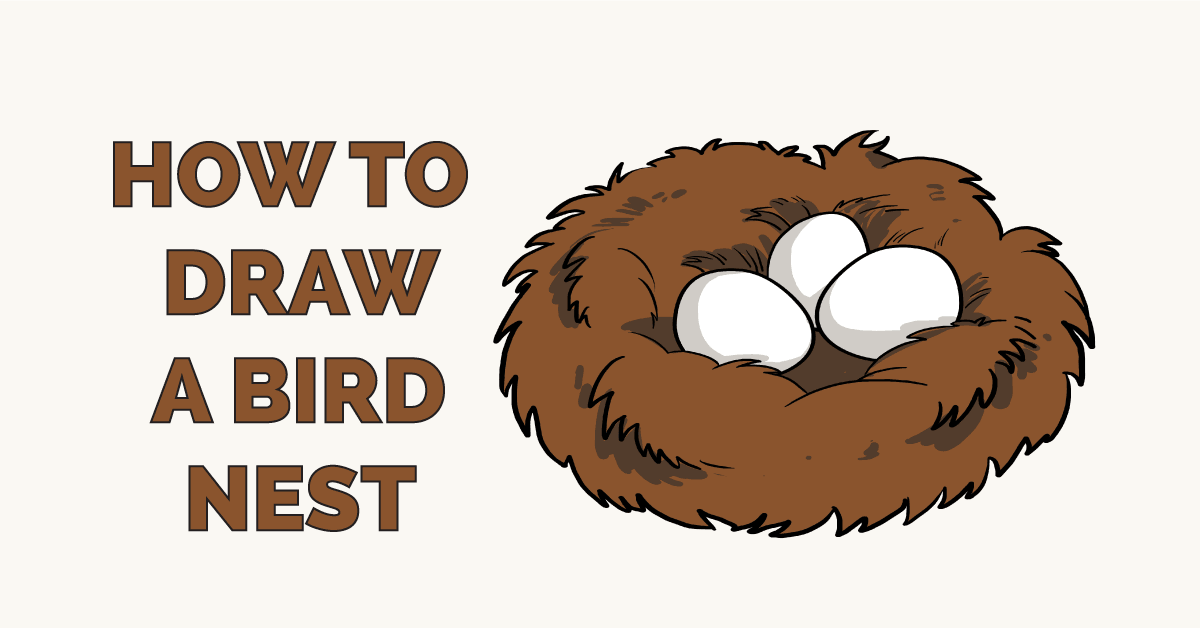 How to Draw Bird Nest Featured Image