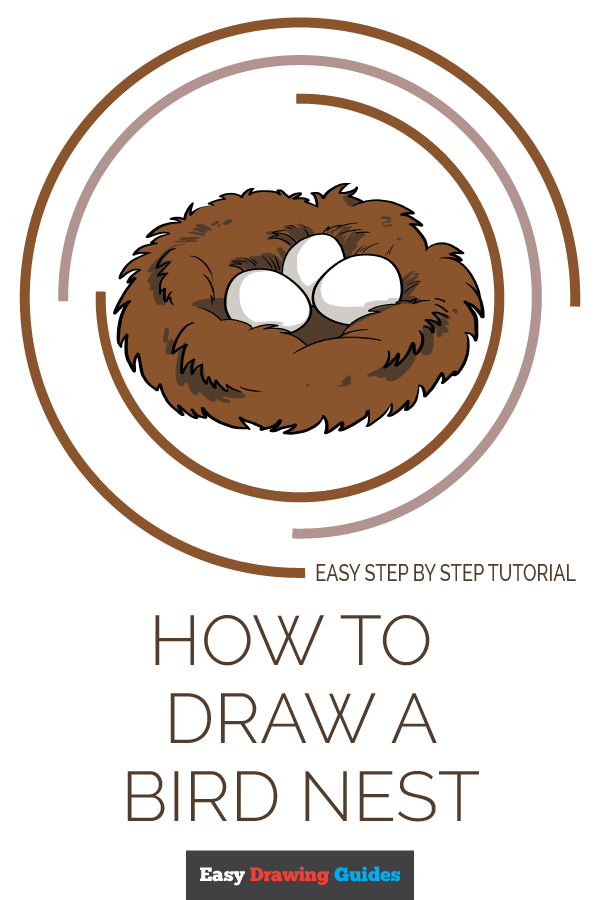 How to Draw Bird Nest | Share to Pinterest