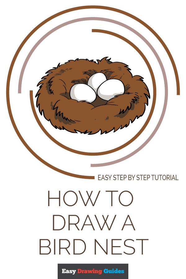 How to Draw Bird Nest Pinterest Image