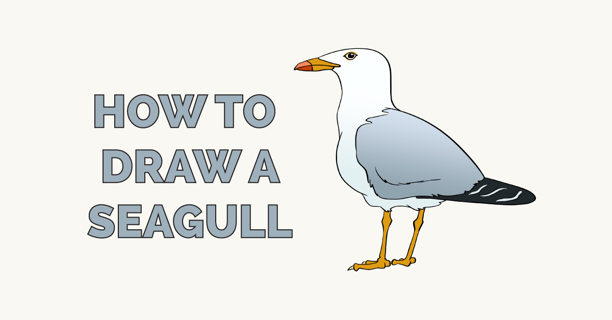 How to Draw a Seagull Featured Image