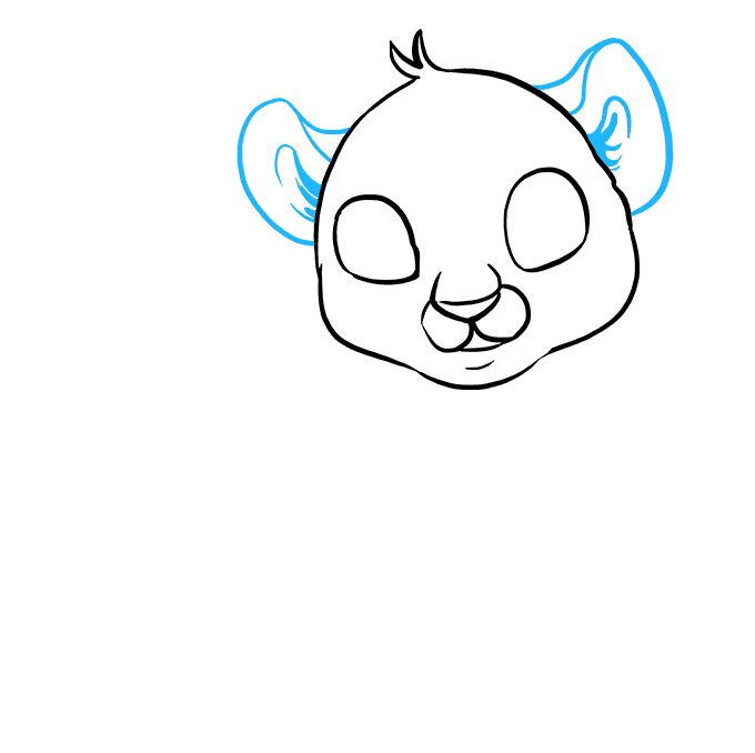 How to Draw Baby Tiger: Step 3