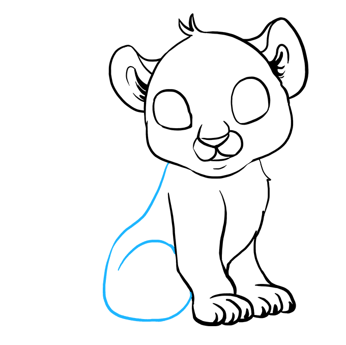 How to Draw Baby Tiger: Step 6