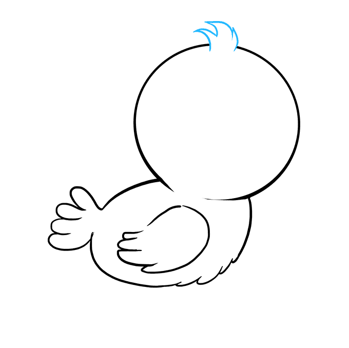 How to Draw Baby Bird: Step 5