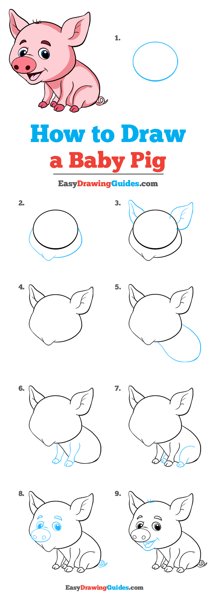 How to Draw a Baby Pig Step by Step Tutorial Image