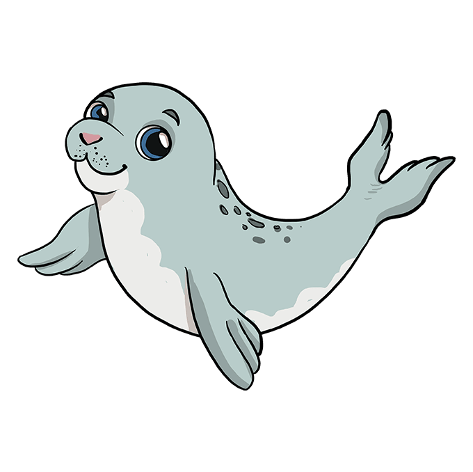 How to Draw Baby Seal: Step 10