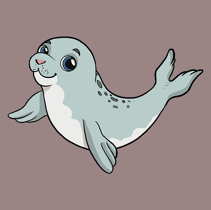 Cómo dibujar una foca bebé: paso 10