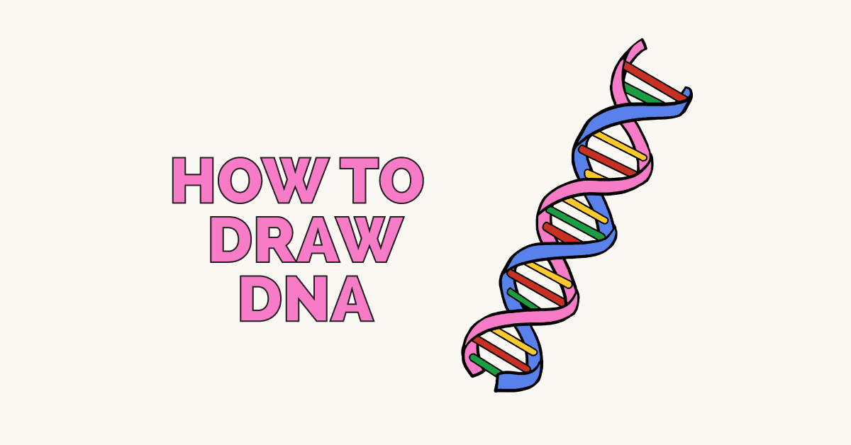 How to Draw DNA Featured Image