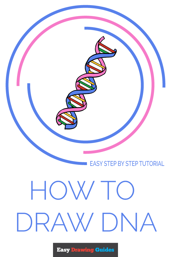 How to Draw DNA Pinterest Image