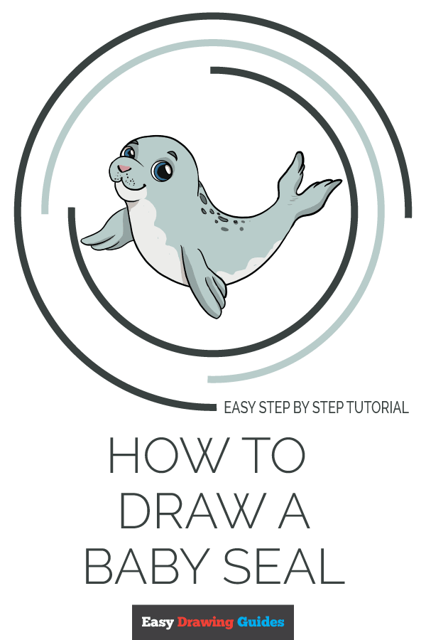 How to Draw a Baby Seal Pinterest Image