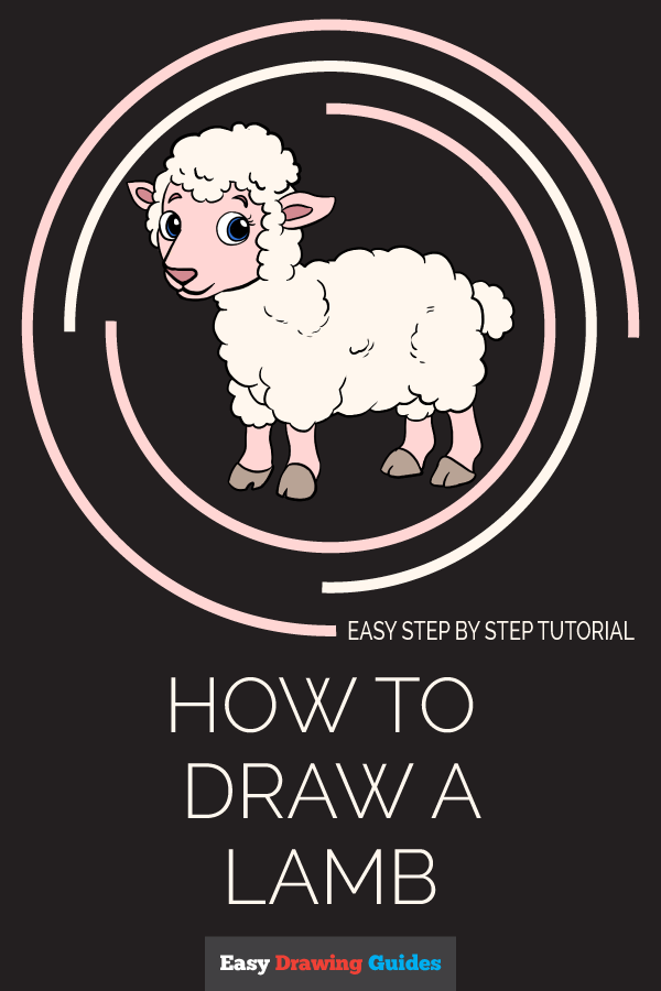 How to Draw a Lamb Pinterest Image