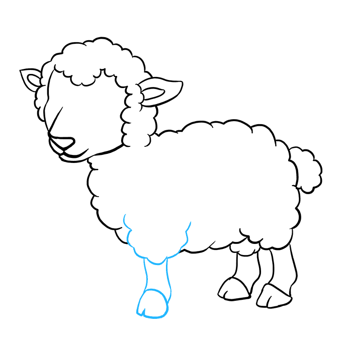 How to Draw a Lamb Step 07