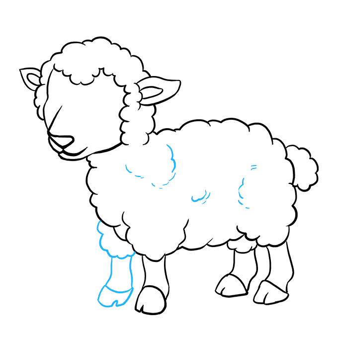 How to Draw a Lamb Step 08
