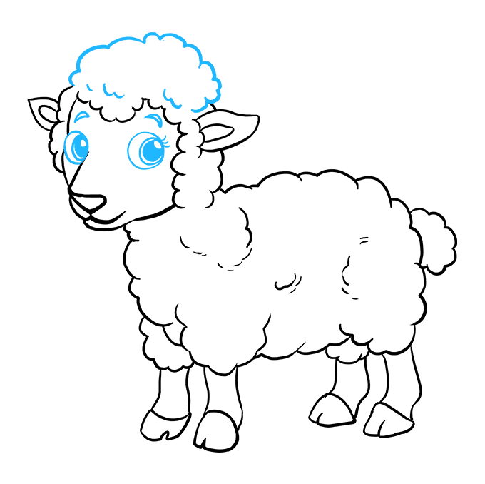 How to Draw a Lamb Step 09