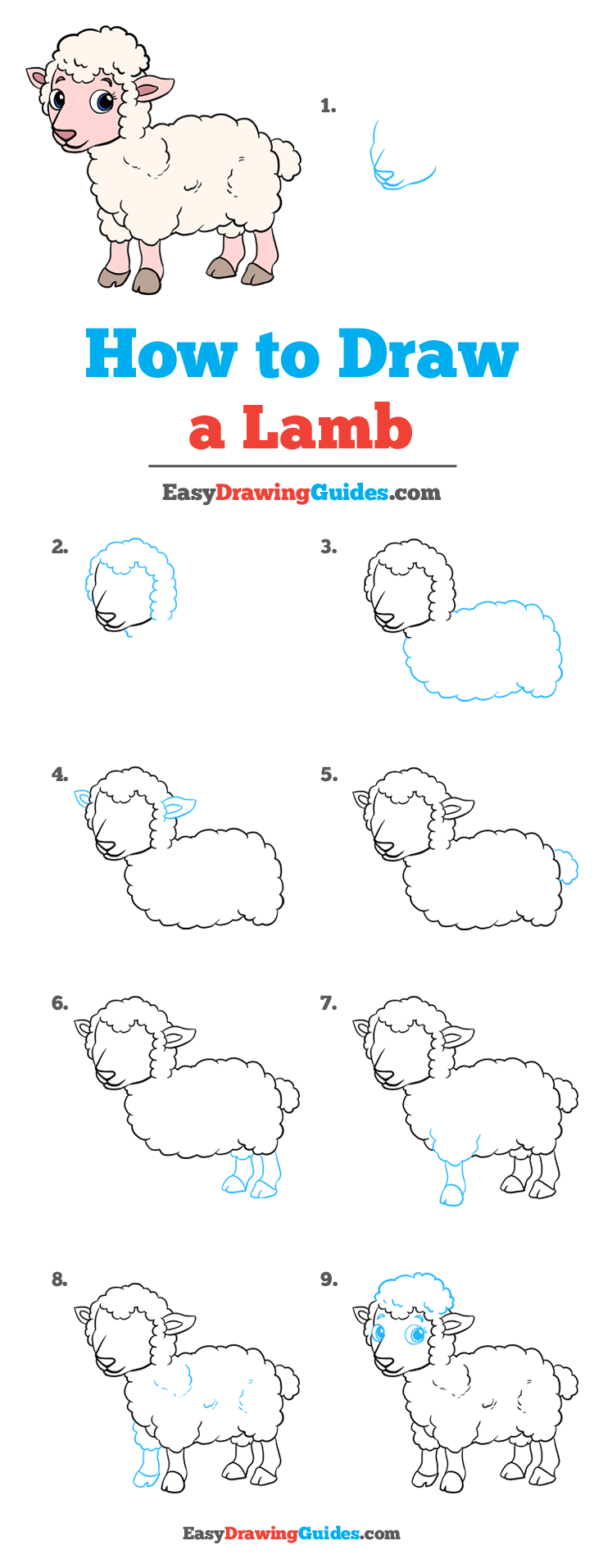 How to Draw a Lamb Step by Step Tutorial Image
