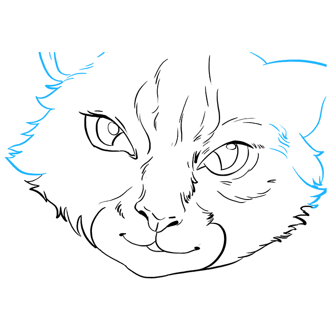 How to Draw Cat Eyes: Step 7