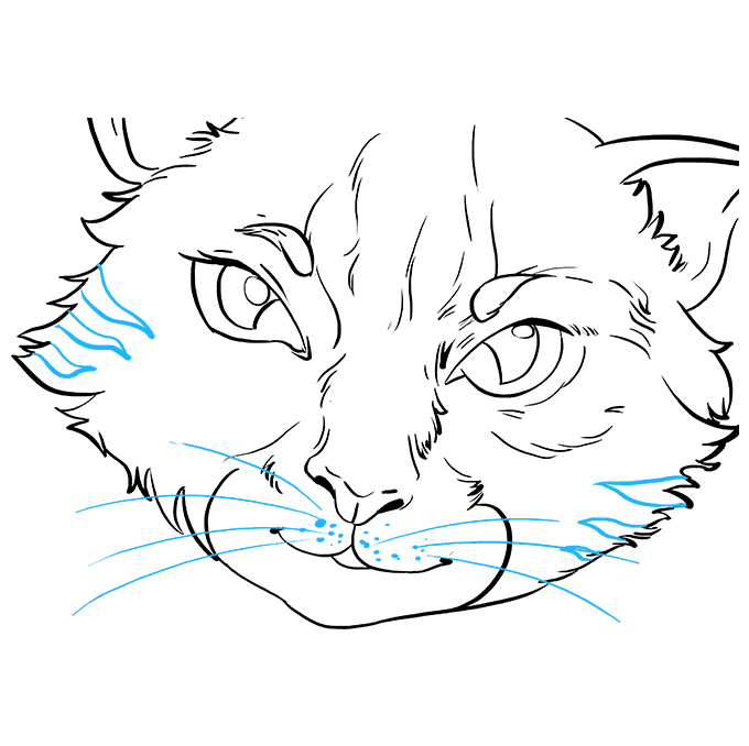 How to Draw Cat Eyes: Step 9