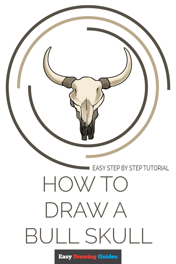 How to Draw a Bull Skull - Really Easy Drawing Tutorial