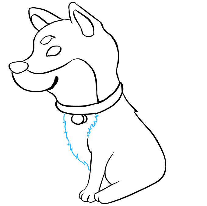 How to Draw Shiba Inu: Step 6