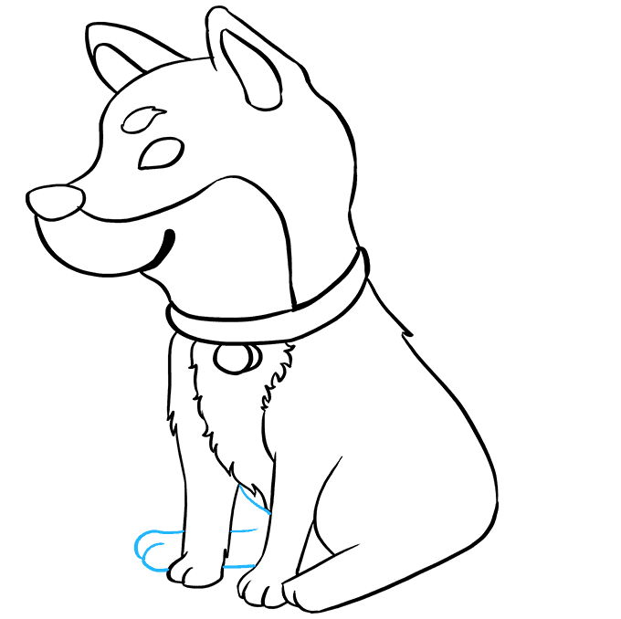How to Draw a Shiba Inu Step 08