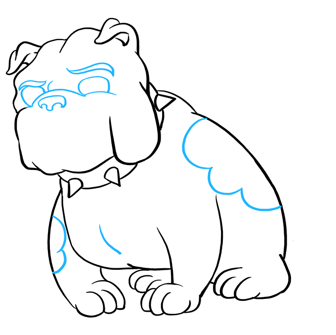 How to Draw Bulldog: Step 8