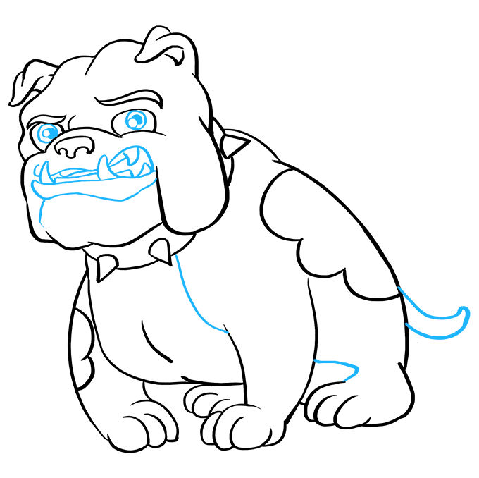 How to Draw Bulldog: Step 9