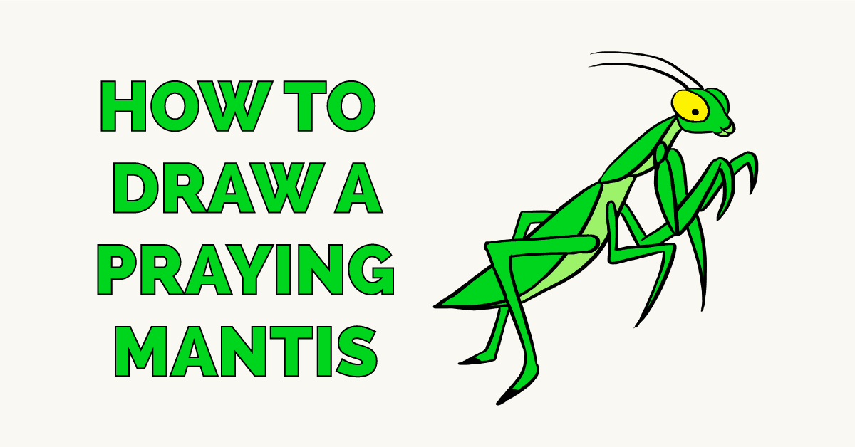 How To Draw A Praying Mantis Really Easy Drawing Tutorial