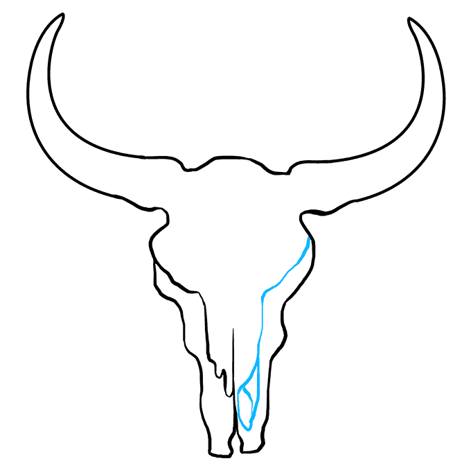 How to Draw a Bull Skull Step 06