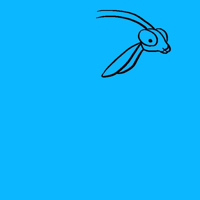 How to Draw Praying Mantis: Step 4