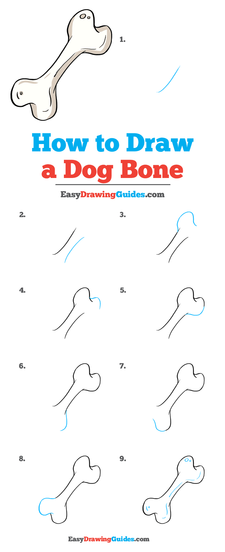 How to Draw Dog Bone