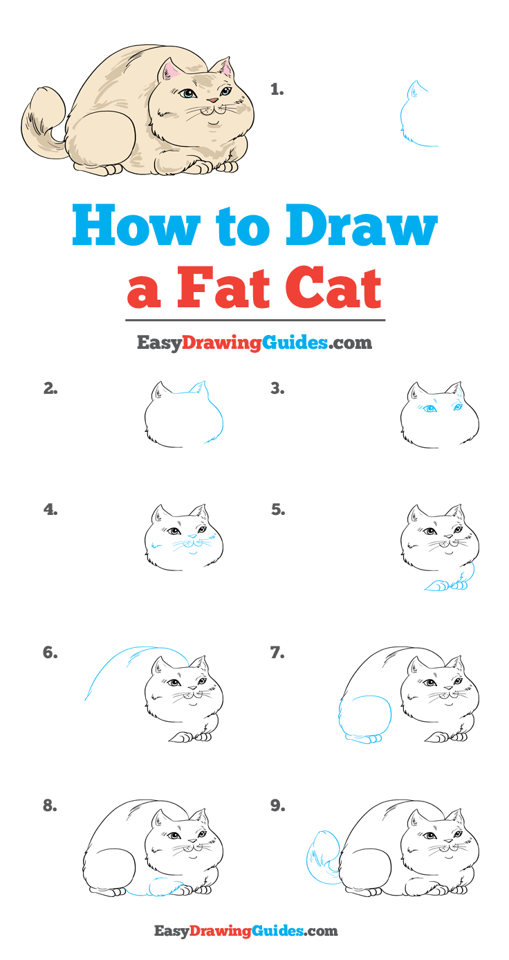 How to Draw Fat Cat