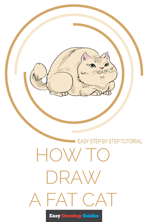 How to Draw Fat Cat | Share to Pinterest
