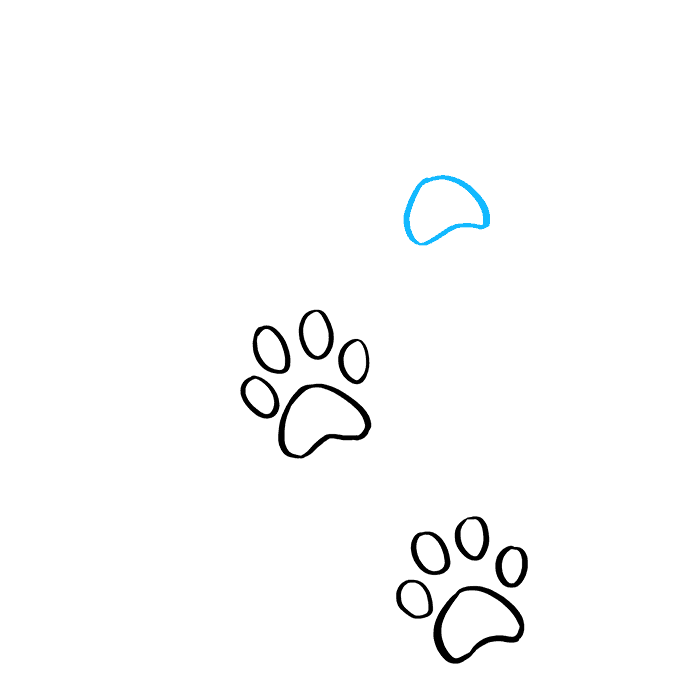 How to Draw Cat Paw Prints: Step 5