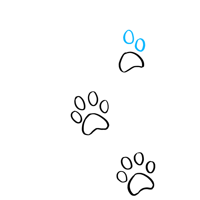 How to Draw Cat Paw Prints: Step 6