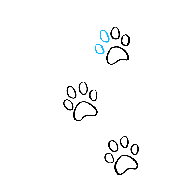 How to Draw Cat Paw Prints: Step 7