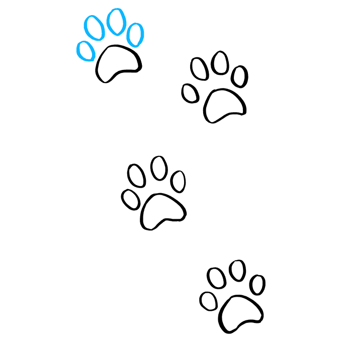 How to Draw Cat Paw Prints: Step 9