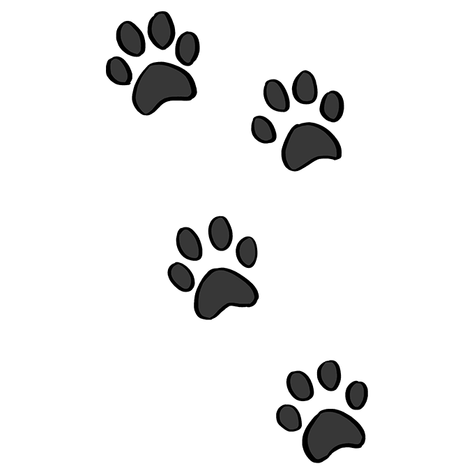How to Draw Cat Paw Prints: Step 10