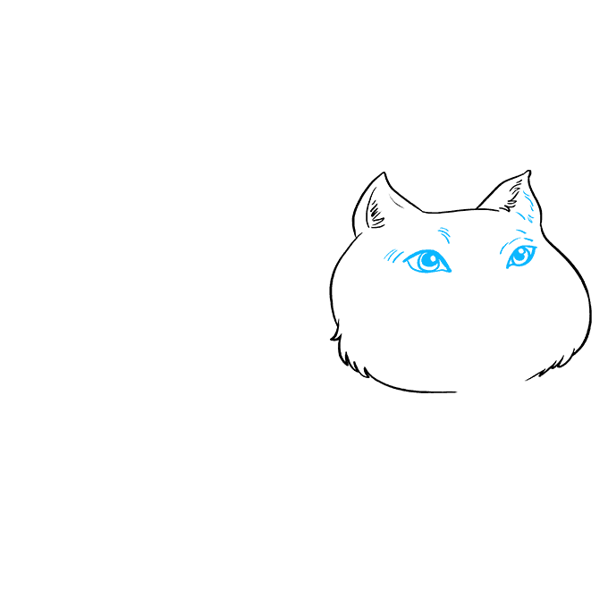 How to Draw Fat Cat: Step 3