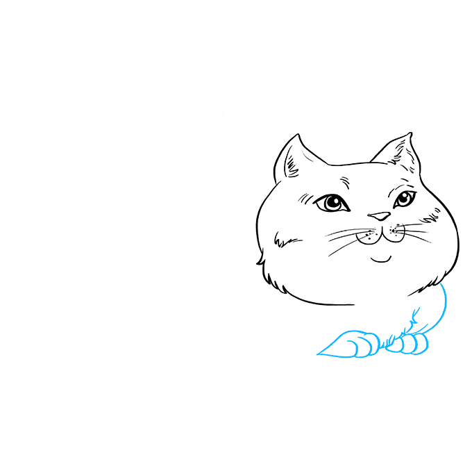 How to Draw Fat Cat: Step 5