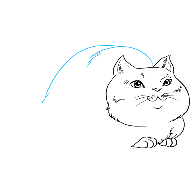 How to Draw Fat Cat: Step 6