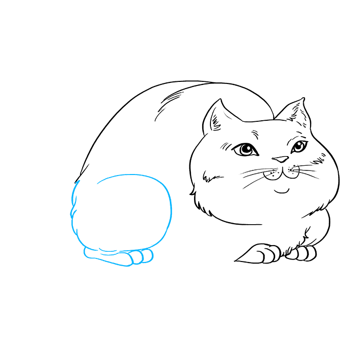 How to Draw Fat Cat: Step 7