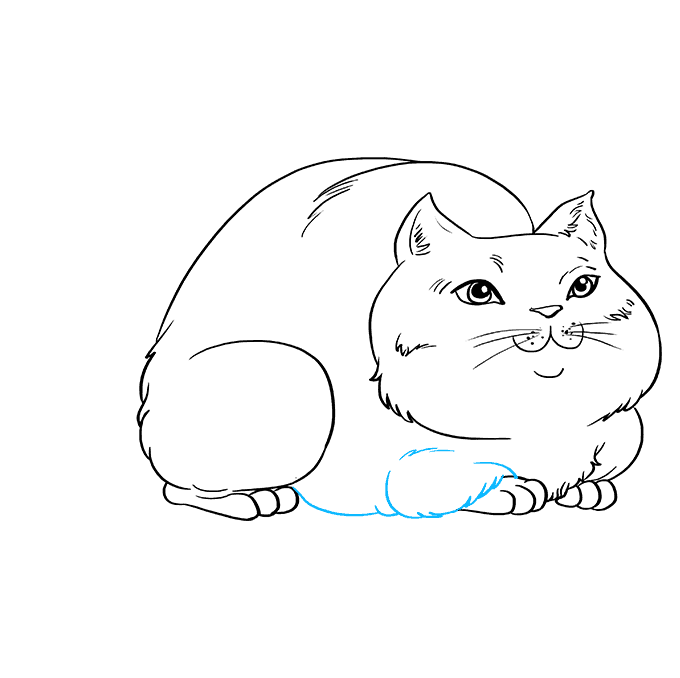 How to Draw Fat Cat: Step 8