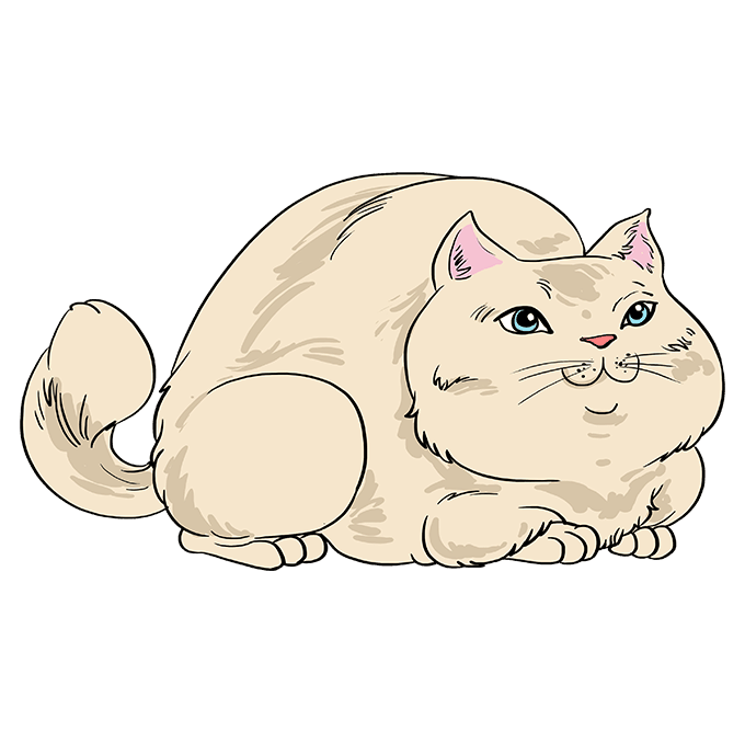 How to Draw Fat Cat: Step 10