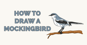 How to Draw a Mockingbird Featured Image